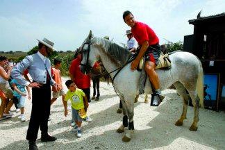 Visita la ganadería Torrestrella