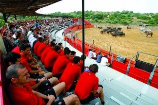 Visitantes en la plaza de toros de Los Alburejos A campo abierto